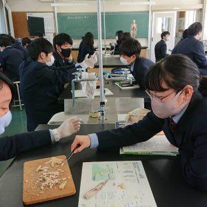 OISCA Academy Senior High School